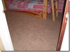 carpet project 001 (Medium)