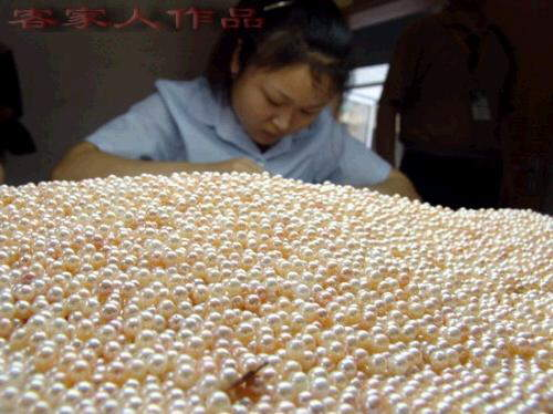 HOW PEARLS COME TO MARKET