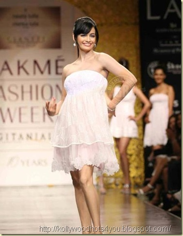 lakme-fashion-week-spring-summer2010-87