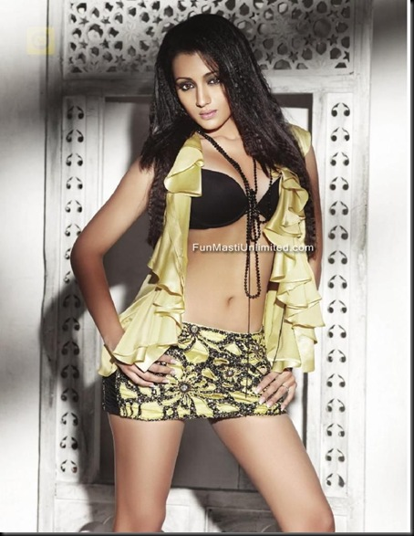 trisha-krishnan-lingerie-photo-shoot-04