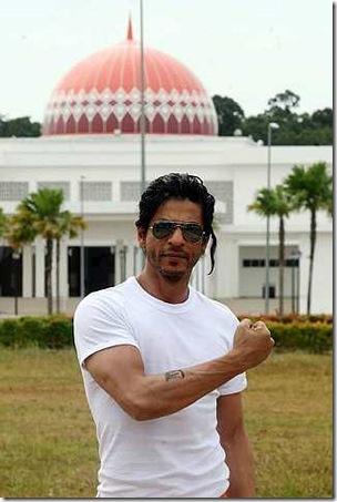 5Shahrukh Khan's Don 2