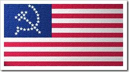 UnitedSocialistStatesOfAmericaFlag