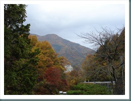 Ashiyasu Fall 2008-11-15 016