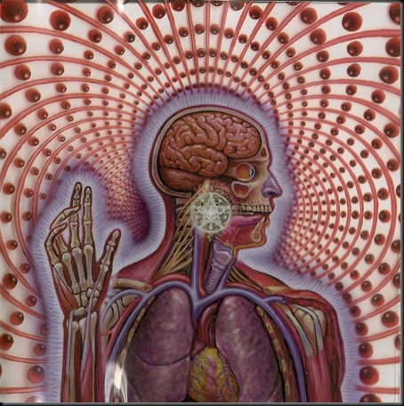Lateralus4