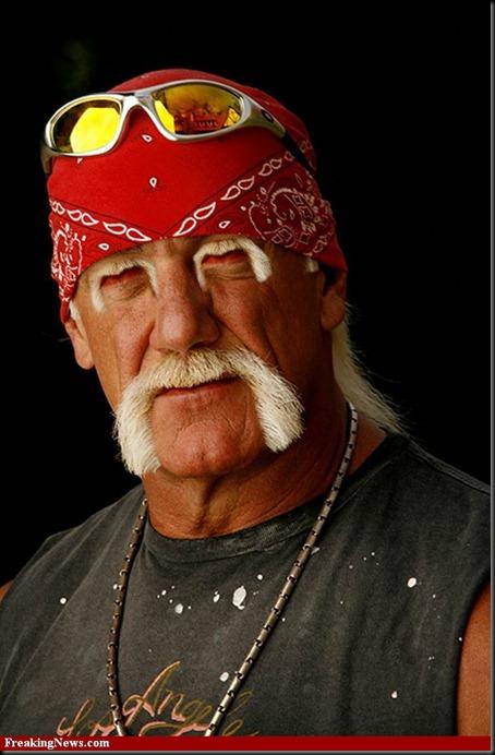 Hulk-Hogan--35005