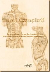 anatomia 1110001