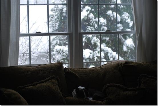 snow2 005