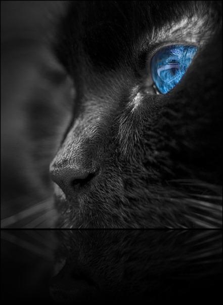 1292135652_blue4