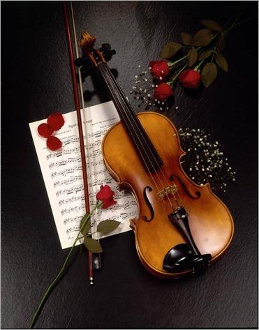 violin21