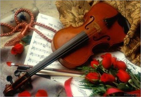 violin_con_rosas01