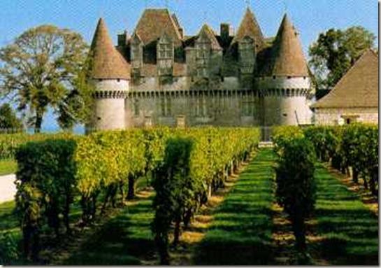 monbazillac - touring vines