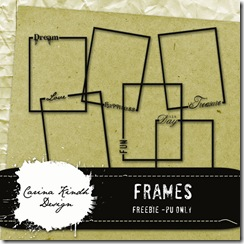 Frames-preview