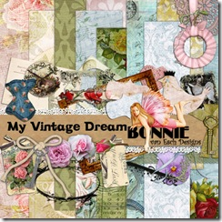 BvanEsch_MyVintageDream_PREVIEW