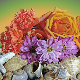 by Dipali S - Artistic Objects Still Life ( rose, orange, shells, spiked, purple, daisy, seashells, flowers )