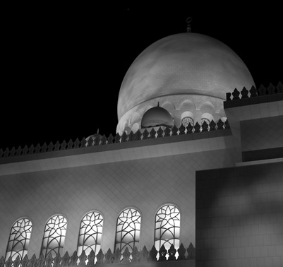 Grand Mosque at Night  (12 of 22)