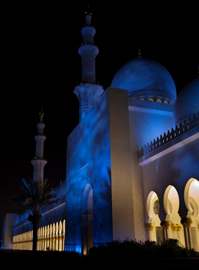 Grand Mosque at Night  (21 of 22)