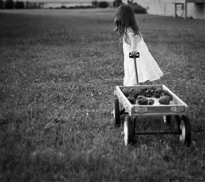 Ella's Wagon