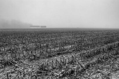 Barns in the fog-2-Edit