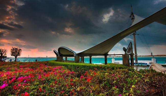 Corniche Flowers hyper