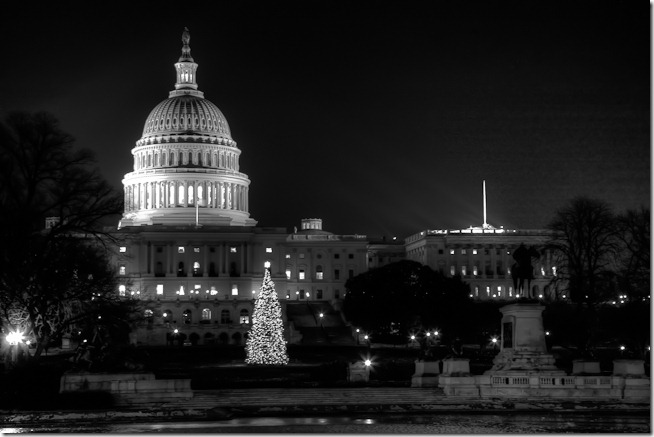 Capitol Christmas Tree at Night BW