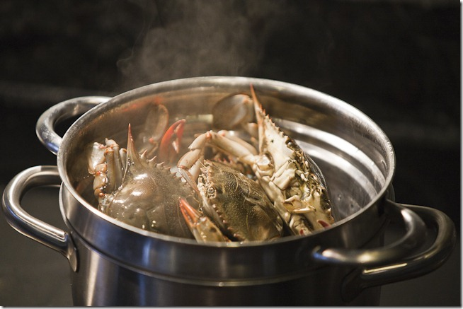 Crabs in the Pot