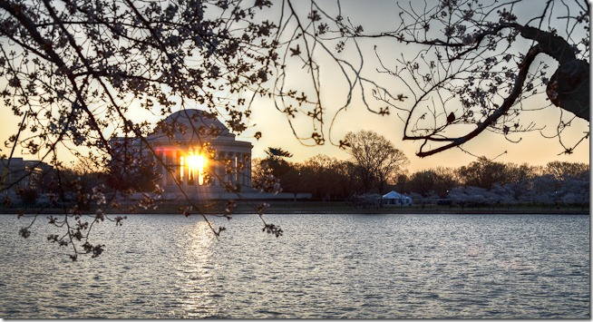 Cherry Blossoms with Sunrise through the Jefferson Memorial-2
