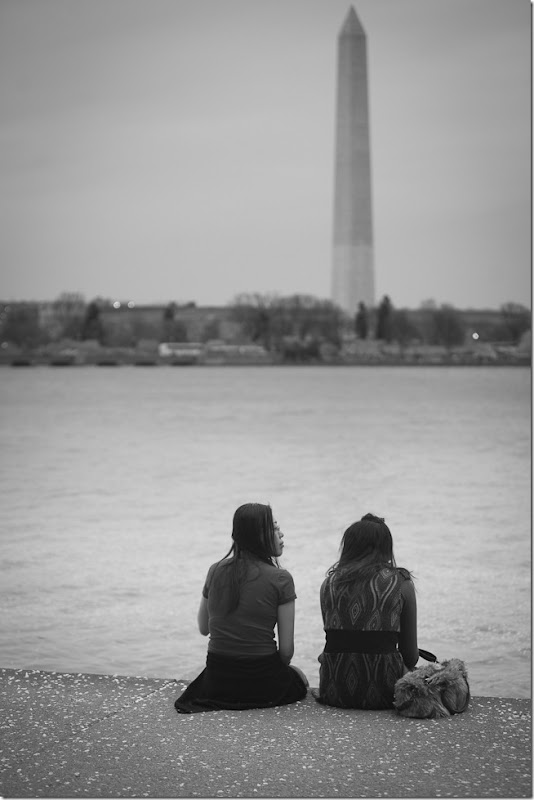 Sitting on the Tidal Basin