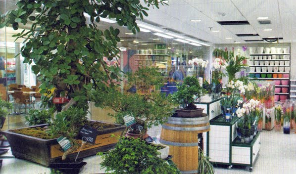 Revisi n interior carrefour se reinventa for Plantas artificiales carrefour