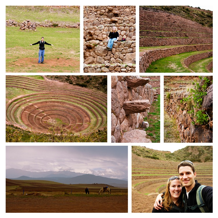 Moray Collage