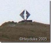 Cape Horn albatross sculpture