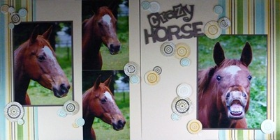 CrazyHorse-DPS-web