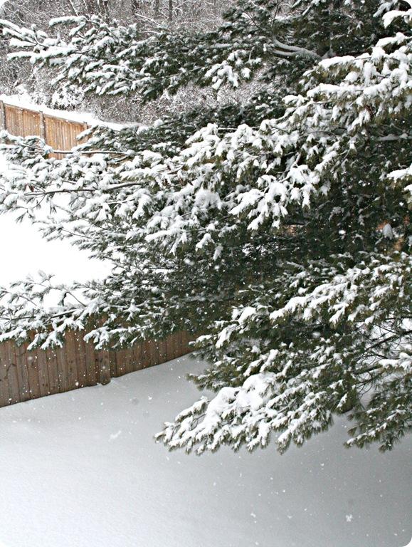 January 2010 015