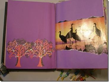 book 005