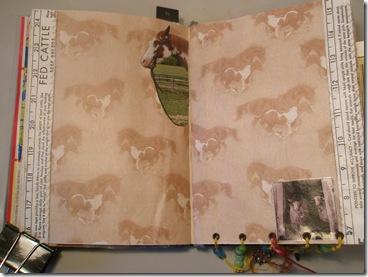 book 017