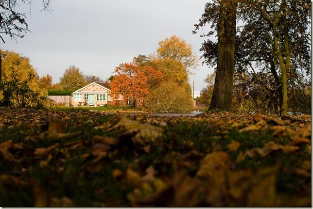 Autumn-1-9