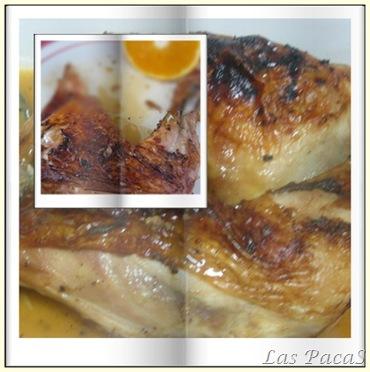 pollo blog