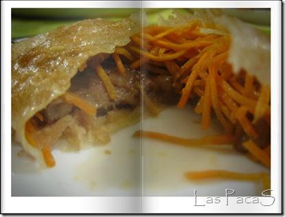 Brick de magret de pato y verduras (2)
