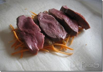 Brick de magret de pato y verduras (3)