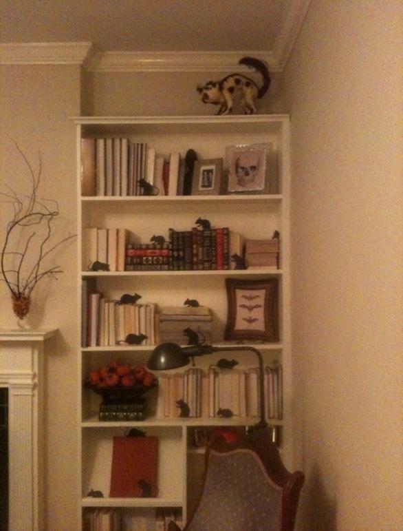 Abby_Shelf_With_lamp