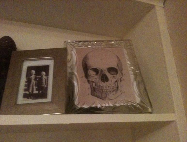 Abby_Skull
