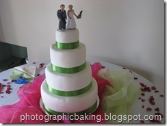Bride and groom go on the cake