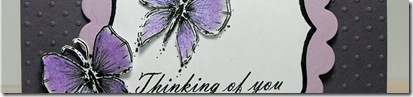 ButterflyThinkingofYou