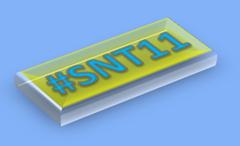 snt11