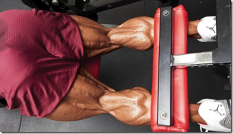 phil heath hamstrings routine