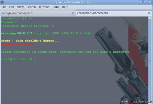 Bam..segmentation fault - theprohack.com