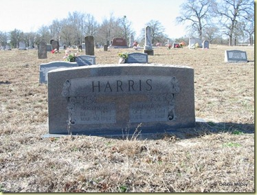 Prairie Springs Cemetery062