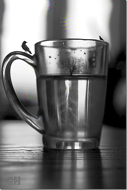 Dmitry Chudesnikov - Cup of Life