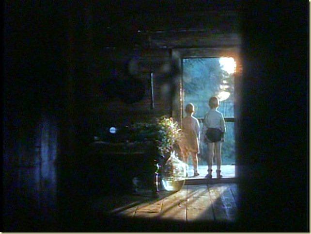 Zerkalo (The Mirror) (1975, dir. Andrei Tarkovsky)