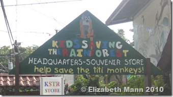 kids saving the rainforest