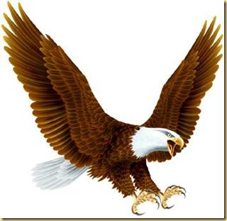001 aguia